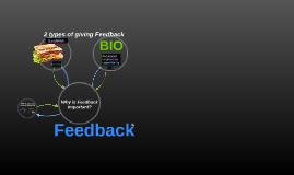 Copy of Feedback IPS