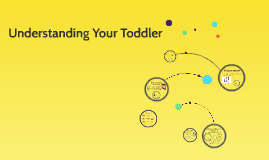 Understanding Your Toddler