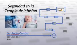 Seguridad en la Terapia de infusion