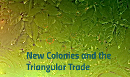 New colonies and the triangular trade