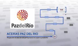 ACERIAS PAZ DEL RIO