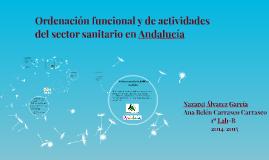 Ordenación funcional y de actividades del sector sanitario e
