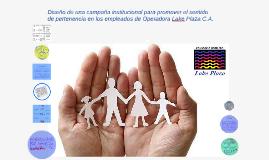 Copy of Diseño de una campaña institucional para promover el sentido