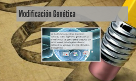 Copy of Modification genetica