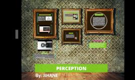 Perception 2 TOK
