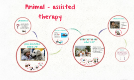 Animal - assisted therapy