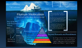 Human Motivation Infographic