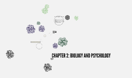 Copy of Copy of Copy of CHAPTER 2: BIOLOGY AND PSYCHOLOGY