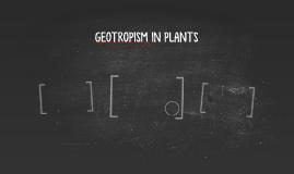 GEOTROPISM IN PLANTS