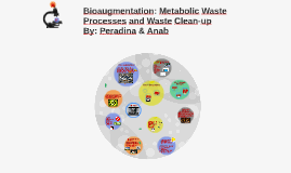 Bioaugmentation: Metabolic Waste Processes
