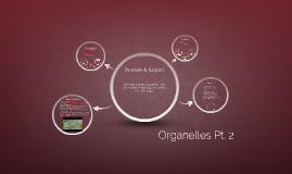 Organelles Pt. 2