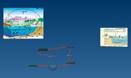 Copy of Anglies ir deguonies apytakos ratas.