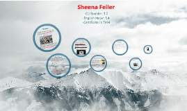 Copy of Sheena Feiler CV