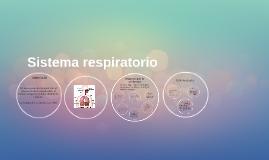 Copy of Sistema respiratorio