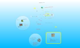 Classifying Woodland Animals