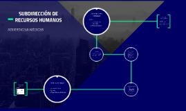 SUBDIRECCIÓN DE RECURSOS HUMANOS