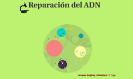 Reparacion del ADN