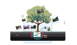 산림과 문화