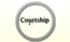 courtship behaviour