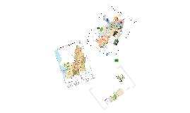 REVISIÓN ORDINARIA DEL POT DE SANTIAGO DE CALI Acuerdo 069 de 2000 - Comunidad