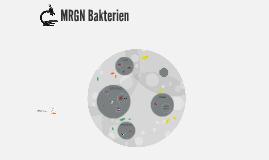 MRGN Bakterien