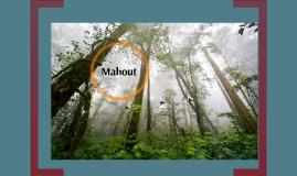 ERUN bkgrd bldg Mahout