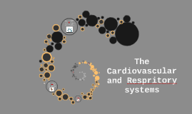 Cardiovascular / Respiratory System