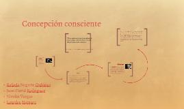 Concepción conciente