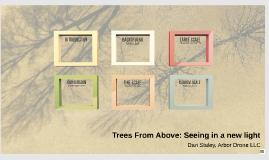 Trees From Above: Seeing in a new light