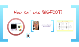 How tall was Big Foot?