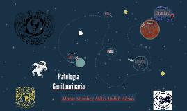Patología Genitourinaria