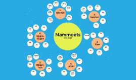 Jente Mammoet