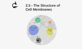 2.5 - The Structure of Cell Membranes