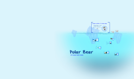 Copy of Polar Bear
