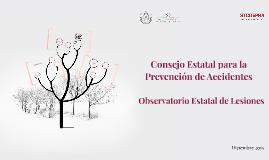 Observatorio Estatal de Lesiones