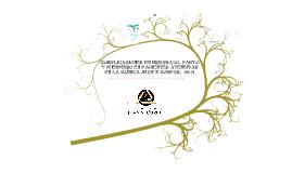 Copy of COMPLICACIONES EN EMBARAZO, PARTO Y PUERPERIO EN PACIENTES ATENDIDAS EN LA CLÍNICA JUAN N CORAS LTDA. 2012