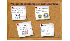 Experiencia de programación en FAO-Nicaragua