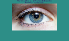 Copy of The Similarities and Differences Between the Human Eye ans a Camera