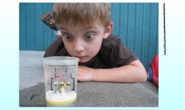 1entretants: tic per a ciencies