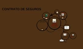 Copy of SOCIEDAD DE ECONOMIA MIXTA