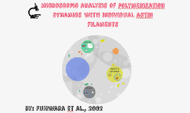 Level 3 Tutorial Presnetation