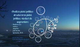 Analiza pieţei politice: structura pieţei politice; niveluri de segmentare