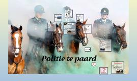 Politie op de paard