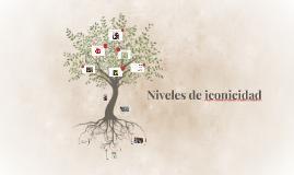 Copy of Niveles de iconicidad