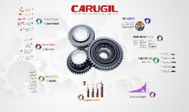 Copia de New Carugil - Company Profile