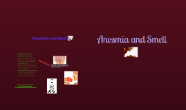 Copy of Anosmia and Smell