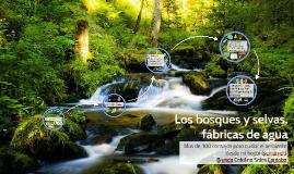 Los bosques y selvas, fabricantes de agua