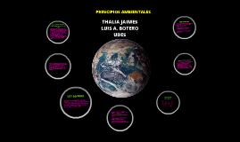 Copy of PRINCIPIOS AMBIENTALES LEY 99-93