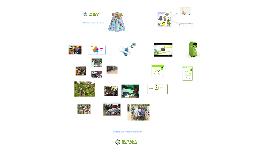 El Reciclaje, motor de ayuda
