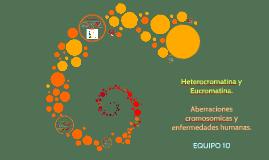 Copy of Heterocromatina y Eucromatina.